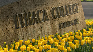 tulips in front of the entrance sign to Ithaca College