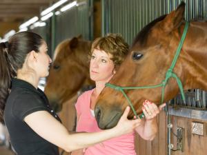 A faculty member in a salmon colored shirt is standing next to a horse holding its halter while speaking a student in a short sleeved dark shirt.