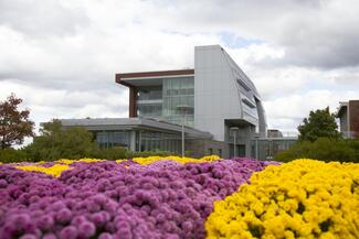 A modern building with purple and yellow flowers in the foreground