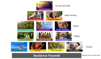 Resilience Pyramid