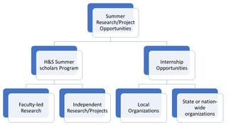 Summer Research Flow Chart