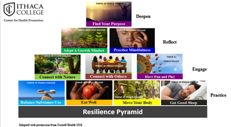 THRIVE resilience pyramid