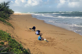 students gather samples on the beach