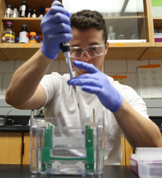 Julian Kellner-Rogers loading a protein gel