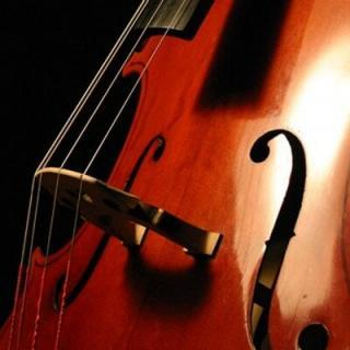 Closeup of a cello and its strings.
