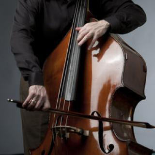 Closeup of a musician playing a double bass.